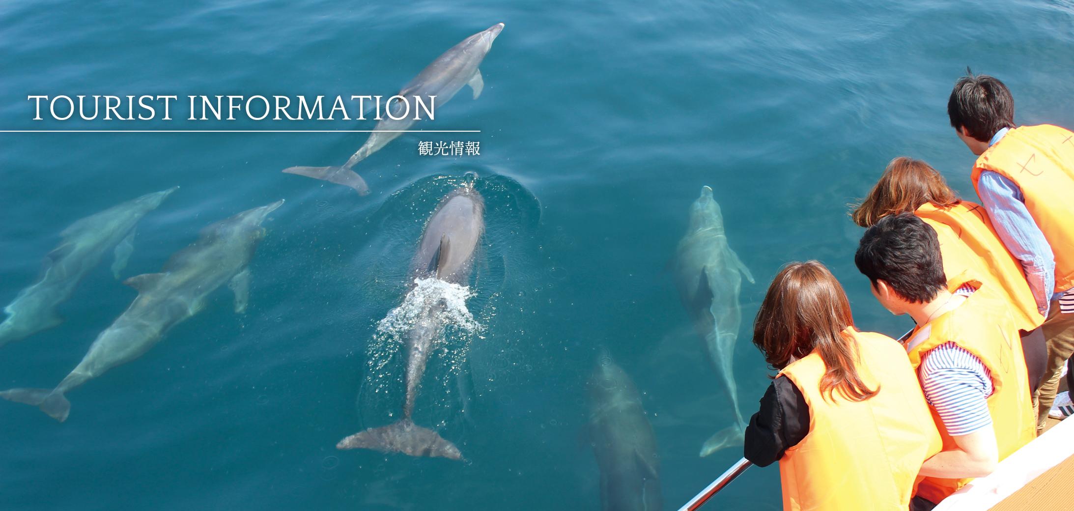 Tourist information(観光情報)イメージ