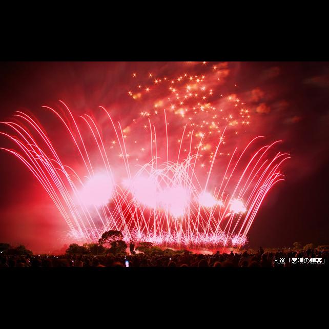 第31回やつしろ全国花火競技大会【3列シートバスゆったりプラン】イメージ