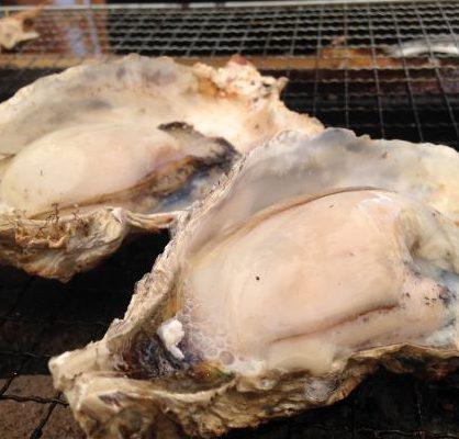 青島漁師の牡蠣小屋 殻付き牡蠣食べ放題イメージ