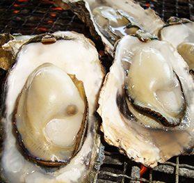 たらカキ焼海道 ぷるぷるの牡蠣食べ放題!イメージ