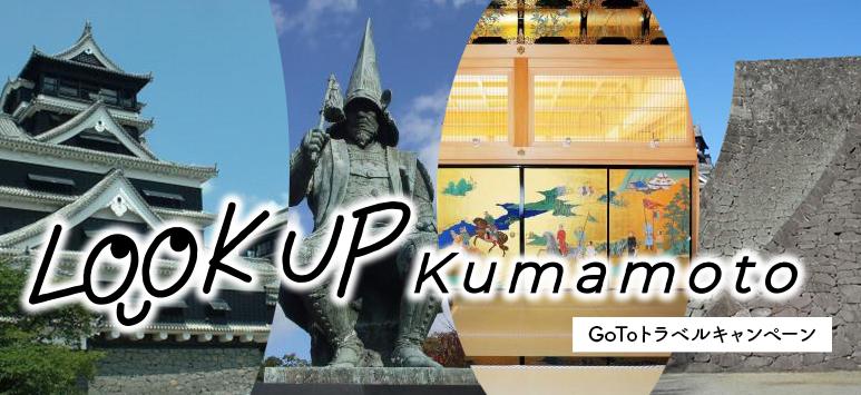 LOOKUP KUMAMOTO
